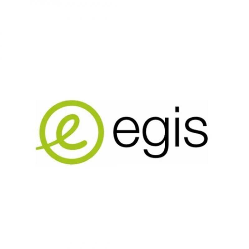 EGIS - Villes, routes et mobilités